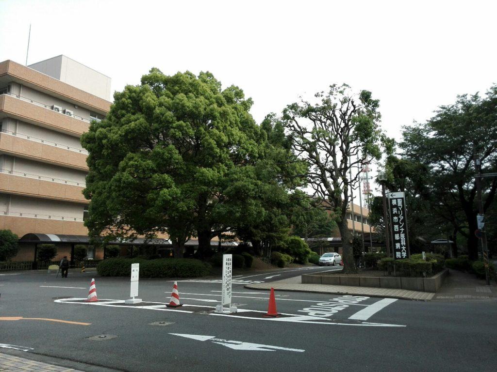 市 病院 西部 横浜 マリアンナ 聖 メールマガジン 2021年7月号(第88号)